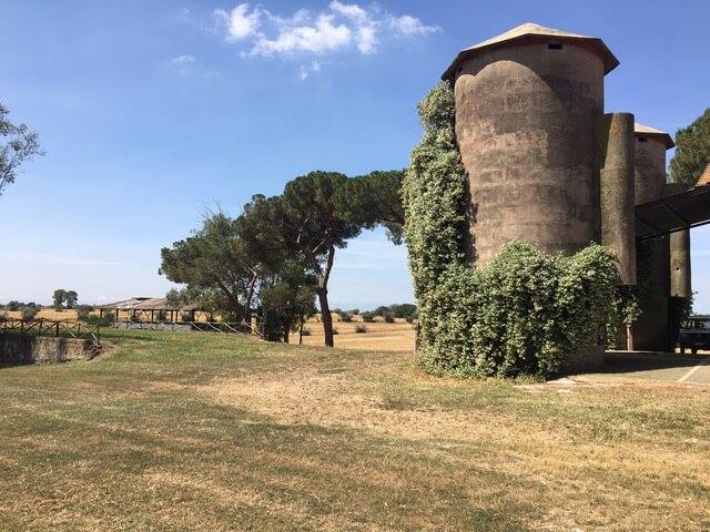 Vendita terreno agricolo a Roma - Azienda agricola Boccea
